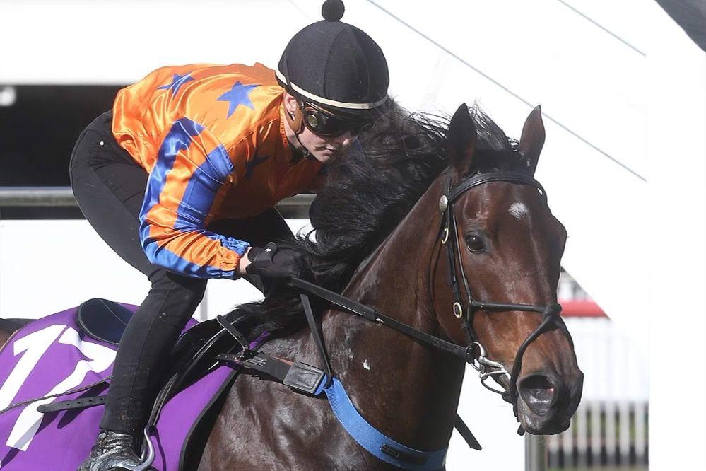 Lightweight Airmesh Riding Glove